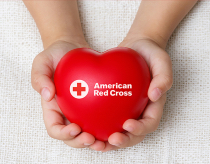 Red Cross Blood Drive @ Skyland Church (Dining Hall)